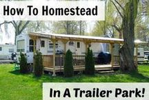 Homesteading (Rural, Urban, and Otherwise!)