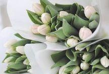 Blommor<3
