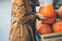Sweaters and Pumpkins and Chai, OH MY! / All things autumn. / by Morea Lloyd