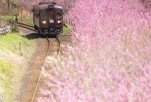 Places - Japan / Japan chronicles