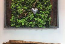 www.moss-wood.nl / Super creatief met mos en hout made by Daphne