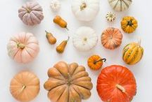 Fall Favorites / Bird's the word. Holiday spreads, side dishes and decorations to make your Turkey Day as smooth as your mashed potatoes. / by Aladdin