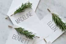 Winter Wonderland / Recipes, drinks, and decorating pinspiration to delight during the winter holidays.  / by Aladdin