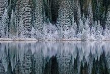 Mountains & woods, rivers & lakes / by Cindy Leper