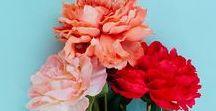 florals. / florals galore.