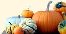 Pumpkins & Gourds / Gourds will be a part of the CSA this season and we hope to give out Sugar Pumpkins as well.