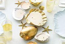 Seashells DIY
