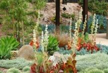 Gardening / landscape ideas / Design ideas for outside. Patios, gardens, landscapes, etc.