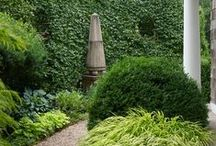 Garden: General / by Jane Ginn