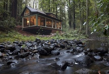 "Rustic Cabin / Some call it ""shabby chic;"" some call it ""crap."" I still like it. / by Michael Musgrove"