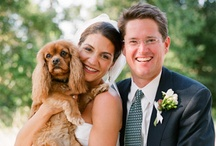 "Woof Woof  ""We Do"" / It is no secret that many of us consider our dogs to be family. So it only makes sense to include them in one of the most important days of your life! More & more couples are continuing to include their pups as ring bearers, escorts, or just plain old companions."