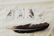 {feathers}