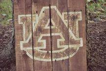 Auburn University / All things Auburn University. War Eagle! / by Chad Thiele