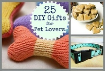 DIY Projects / crafts, crafts and more crafts!