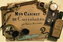 Cabinet of Curiosities / A cabinet of curiosities was an encyclopedic collection in Renaissance Europe of types of objects whose categorial boundaries were yet to be defined.  / by Amy Wells