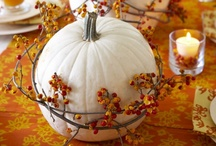 Fall Decorating / by Heather Stacy