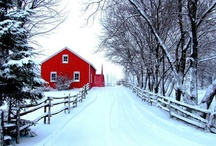 Barn House Ideas / My house is red and looks like a barn - I love the playful look and I am always looking for inspiration