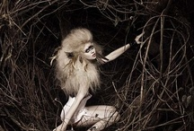 Photography/Inspiration* / by Ashley Ho