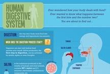 Teaching - Digestive System / by Kristina Nicole