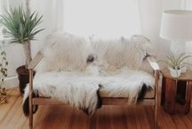 Interior / by Darcy Stice