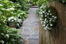 Outside / Flowers, pools, landscaping / by Lisa Dickerson