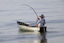 Fishing / by Brian Poulson