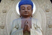 Buddha / Buddha, Buddhas, Buddhism, lotus  / by Spirit Healer
