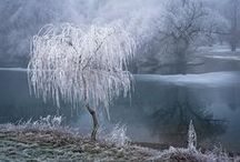 Frost - ice - snow
