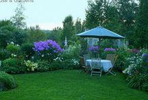 Garden / by Carol Grissom