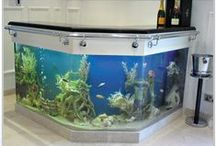 Cool Ideas / Gardens, fish tanks, neat stuff for home, etc.