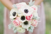 {Wedding} Bouquets & Bouts