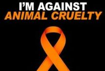 """("""""""") Animal Rights ("""""""") / Animals like us humans feel, pain, scared, stressed, bewilderment, sadness, hopeless, fearful of the unknown, love, joy, how do I know this for sure, because they was created by the same creator who created you and I.. True humanity does not allow us to impose such sufferings on them. It is our duty to make the whole world recognize it. Until we extend our circle of compassion to all living things, humanity will not find peace."""""""