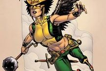 DC: Hawkgirl II / Shiera Hall was unwilling to leave Carter who remained alive after the events in Zero Hour. So her soul found her way to her Grandniece, Kendra Saunders, who had just committed suicide. Shiera's soul entered Kendra's body as Kendra left it. However, she retained no memory of her previous lives with Carter. She donned the mantle of Hawkgirl.