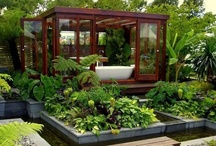 Eco Home / This is for eco lifestyle interiors and exteriors as well as various buildings / by Climate Action