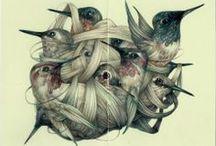 All birds are fat