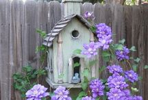 BIRD HOUSES & BIRD THINGS / by Sheila Juarez