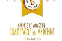 Carnet de Voyage #3 / La Route du Champagne en Fête, et le charmant village des Riceys : de la bonne humeur, de la joie, et du… Champagne !