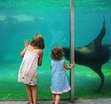 Ausflugsziele für Kinder / Hier findest Du tolle Ausflugsziele, die sich für Kinder und Babys eignen.