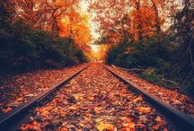 Seasons / Beautiful nature photos and seasonal/holiday inspiration