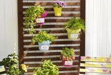 Balkon & Garten / Tolle Ideen rund um Garten und Balkon