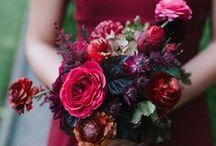 My wedding stuff / by Cassidy Cisneros