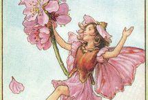 Flower Fairies / Flowers and softness.