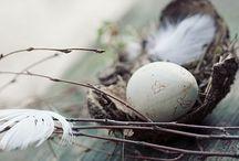 Dekorationen Ostern