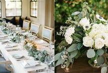 Wauwinet Weddings