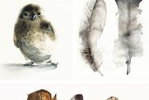 Birds and Feathers