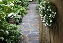 "Walkway ideas / Welcome to Dream Yard's Pinterest board of walkway pictures and other landscape paths. You can also check out our board on ""Stone path ideas"" for less formal walkway designs, and ideas for  your stepping stone paths. Thanks for visiting us and we hope you can check out our other boards. / by dreamyard"