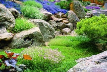 Rock garden ideas / Welcome to Dream yard's Pinterest board of rock garden pictures. Hopefully you find some inspiration for your own rock garden design. Thanks for visiting us, and we hope you get a chance to check out some of our other boards. / by dreamyard
