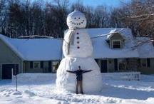 Snowman pictures / Welcome to Dream Yard's pinterest boards. Along with tons of landscaping ideas comes outdoor winter fun. Enjoy our pictures of snowmen and don't forget to check out our other winter boards. Thanks for visiting us.