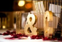 Rocket Weddings / Through designing and decorating hundreds of weddings a year, we have developed a superior level of professionalism and commitment that is required to service such special days. From the modern to the traditional, simple or elegant we have the pieces to create your dream wedding.