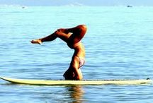 Beach Lovers / Beach, summer, stand up paddle, surf, waves, nature!